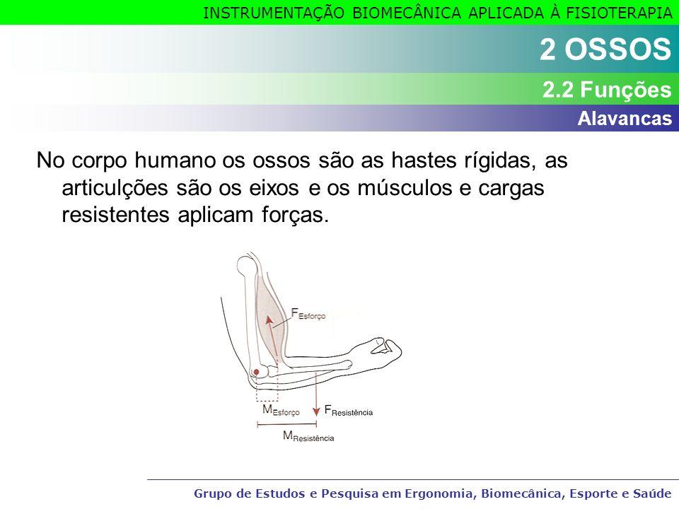 Grupo de Estudos e Pesquisa em Ergonomia, Biomecânica, Esporte e Saúde INSTRUMENTAÇÃO BIOMECÂNICA APLICADA À FISIOTERAPIA Grupo de Estudos e Pesquisa em Ergonomia, Biomecânica, Esporte e Saúde 2 MÚSCULOS3 MÚSCULOS 3.8 Ações musculares ExercícioAção Muscular Comprimento muscular Relação T MUSC - T RES EstáticoIsométricaNão mudaT MUSC = T RES Dinâmico ConcêntricaEncurtaT MUSC > T RES ExcêntricaAlongaT MUSC < T RES