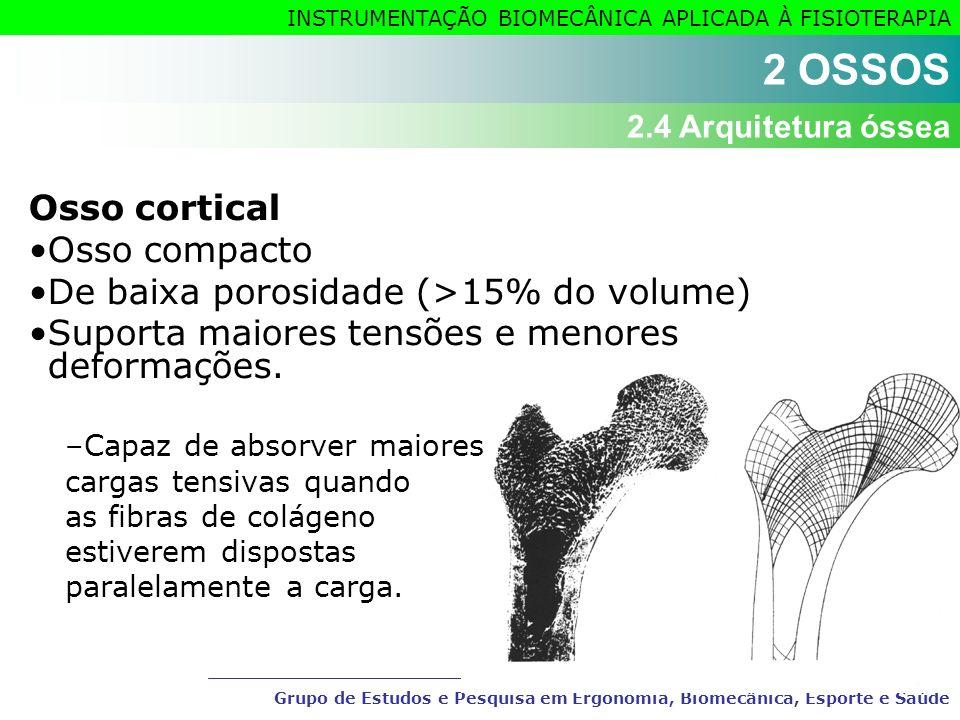Grupo de Estudos e Pesquisa em Ergonomia, Biomecânica, Esporte e Saúde INSTRUMENTAÇÃO BIOMECÂNICA APLICADA À FISIOTERAPIA Osso cortical Osso compacto