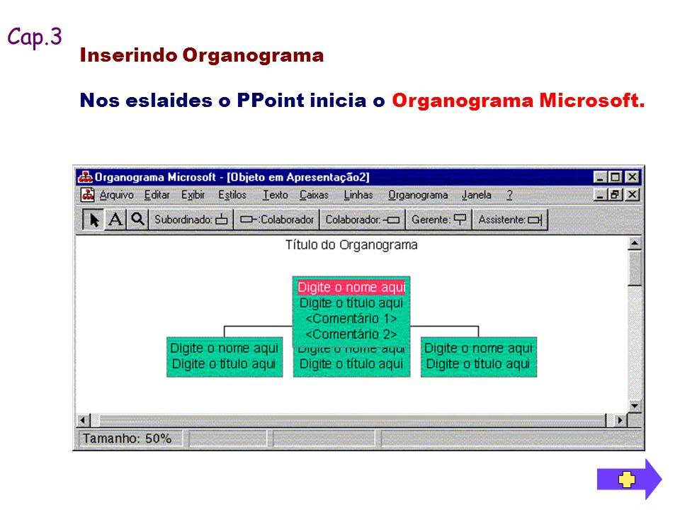 Cap.3 Inserindo Organograma Nos eslaides o PPoint inicia o Organograma Microsoft.