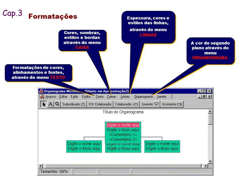 Formatações Espessura, cores e estilos das linhas, através do menu LINHAS Formatações de cores, alinhamentos e fontes, através do menu TEXTO Cores, so