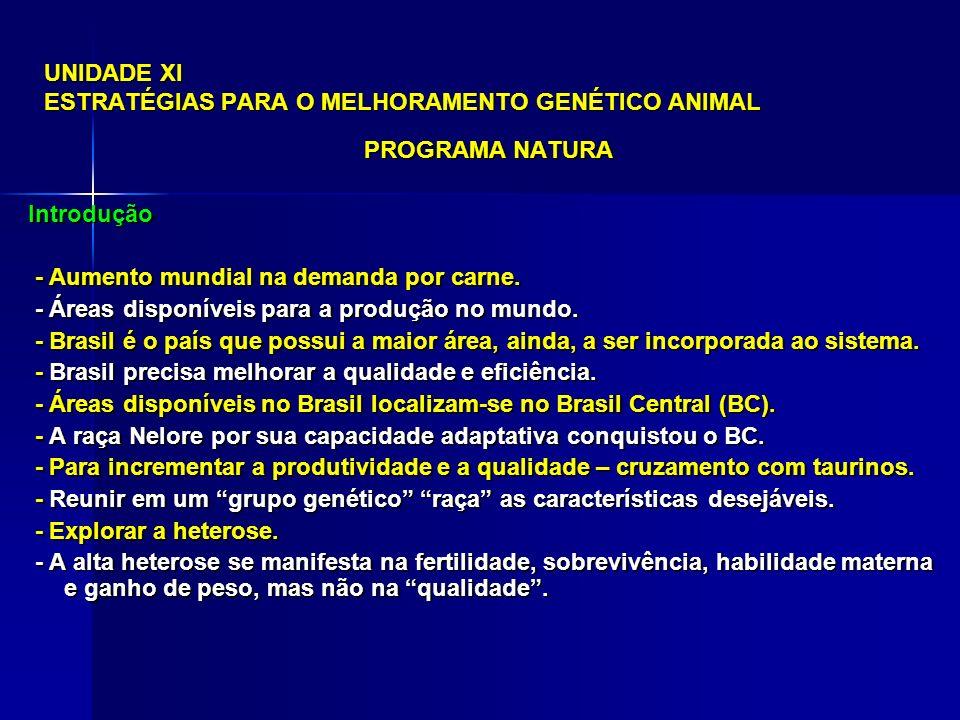 UNIDADE XI ESTRATÉGIAS PARA O MELHORAMENTO GENÉTICO ANIMAL PROGRAMA NATURA Introdução - Alternativa – formar raças ou linhagens comerciais.