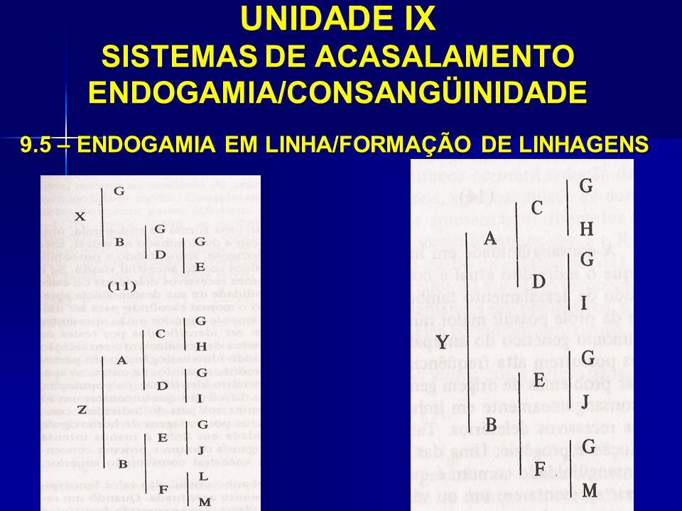 UNIDADE IX SISTEMAS DE ACASALAMENTO ENDOGAMIA/CONSANGÜINIDADE 9.5 – ENDOGAMIA EM LINHA/FORMAÇÃO DE LINHAGENS