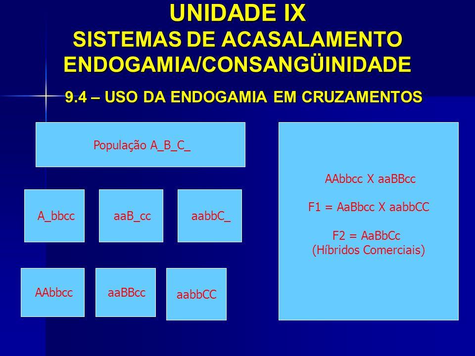 UNIDADE IX SISTEMAS DE ACASALAMENTO ENDOGAMIA/CONSANGÜINIDADE 9.4 – USO DA ENDOGAMIA EM CRUZAMENTOS A_bbcc aaB_cc aabbC_ População A_B_C_ AAbbcc X aaB