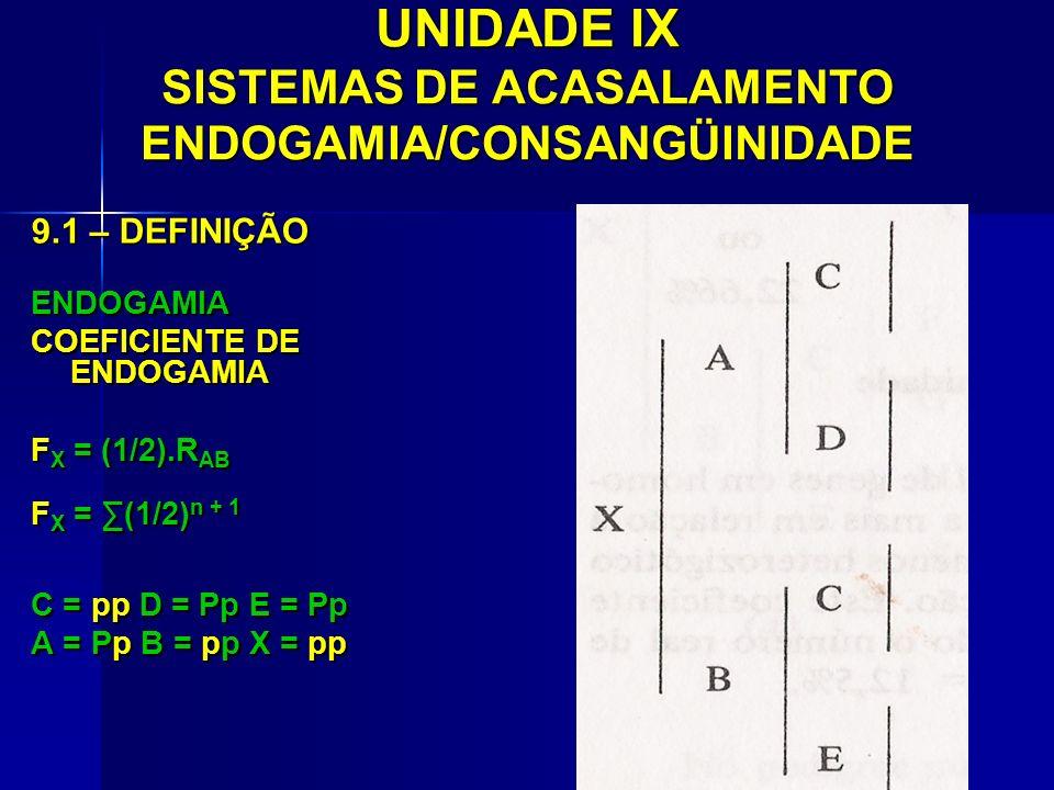 UNIDADE IX SISTEMAS DE ACASALAMENTO ENDOGAMIA/CONSANGÜINIDADE 9.1 – DEFINIÇÃO ENDOGAMIA COEFICIENTE DE ENDOGAMIA F X = (1/2).R AB F X = (1/2) n + 1 C