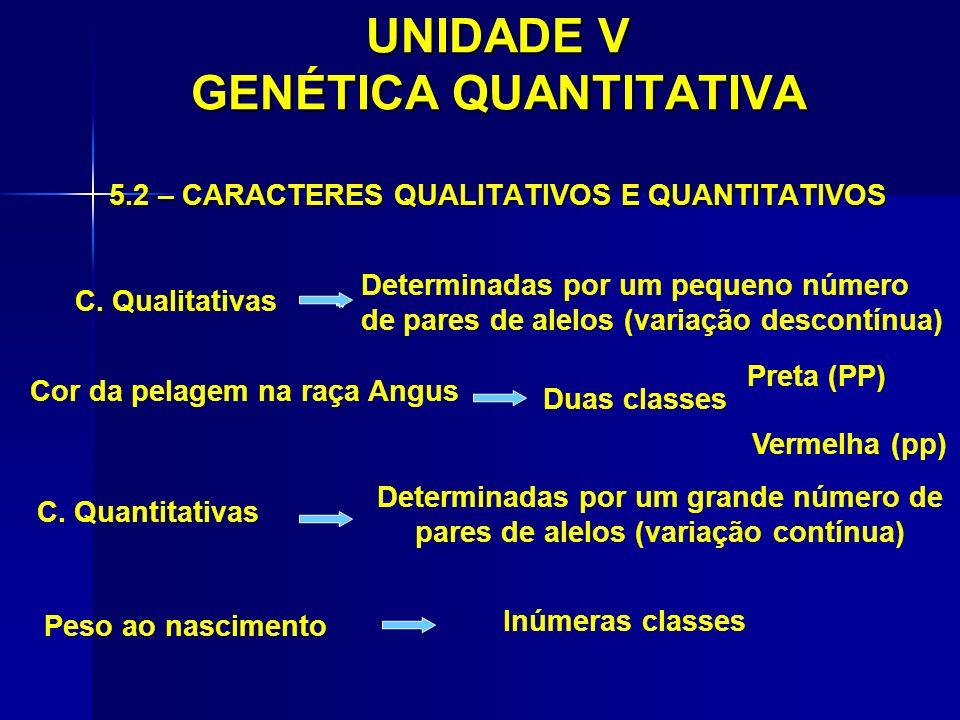 UNIDADE V GENÉTICA QUANTITATIVA 5.2 – CARACTERES QUALITATIVOS E QUANTITATIVOS C. Qualitativas Determinadas por um pequeno número de pares de alelos (v