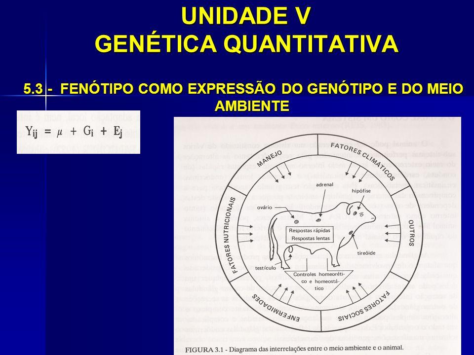 UNIDADE V GENÉTICA QUANTITATIVA 5.3 - FENÓTIPO COMO EXPRESSÃO DO GENÓTIPO E DO MEIO AMBIENTE