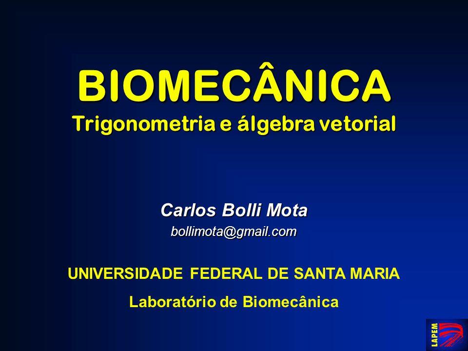 BIOMECÂNICA Trigonometria e álgebra vetorial Carlos Bolli Mota bollimota@gmail.com UNIVERSIDADE FEDERAL DE SANTA MARIA Laboratório de Biomecânica