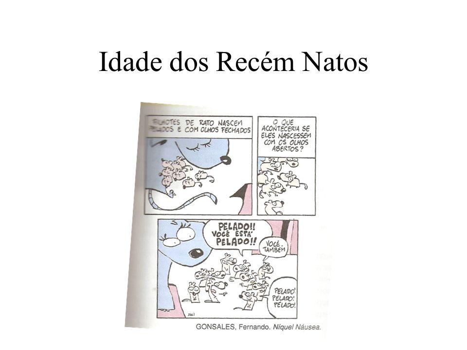 Idade dos Recém Natos