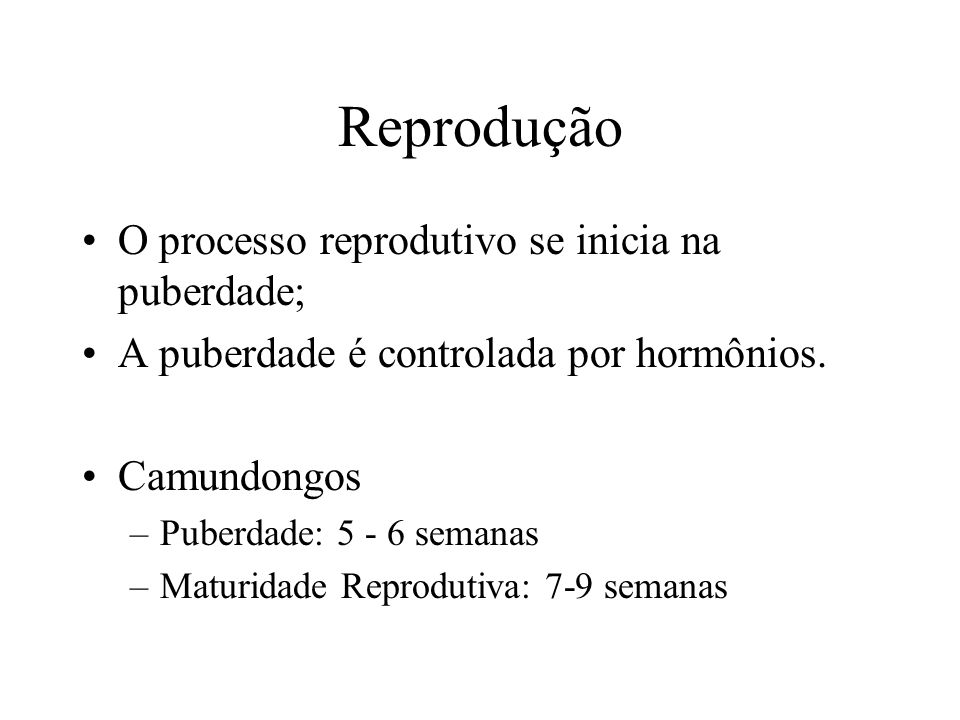 Reprodução O processo reprodutivo se inicia na puberdade; A puberdade é controlada por hormônios. Camundongos –Puberdade: 5 - 6 semanas –Maturidade Re