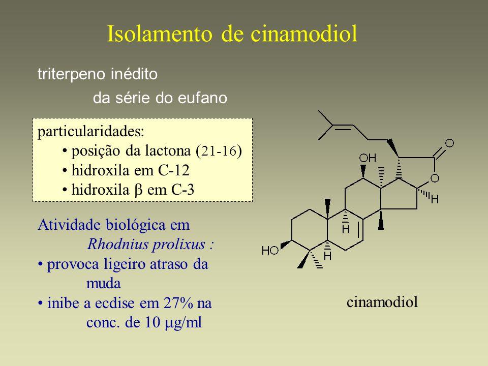 Isolamento de cinamodiol triterpeno inédito da série do eufano cinamodiol particularidades: posição da lactona ( 21-16 ) hidroxila em C-12 hidroxila e