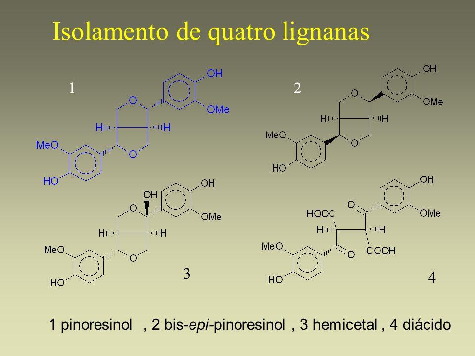 Isolamento de quatro lignanas, 2 bis-epi-pinoresinol, 3 hemicetal, 4 diácido 12 3 4 1 pinoresinol