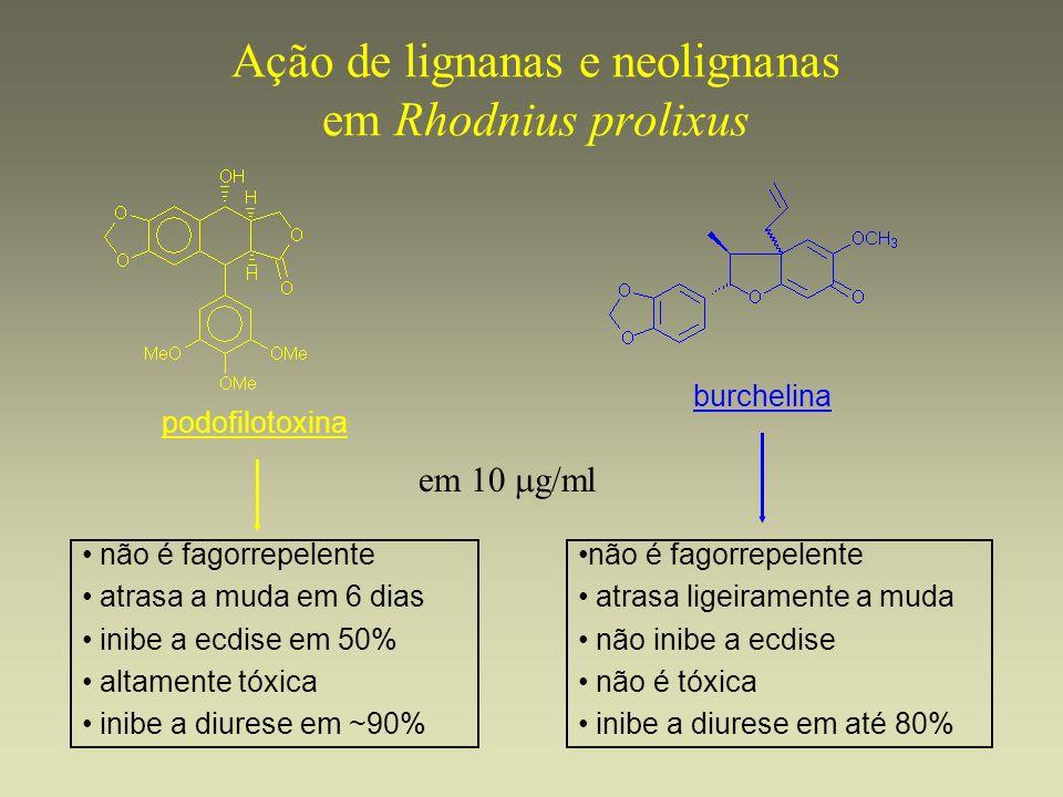 Ação de lignanas e neolignanas em Rhodnius prolixus podofilotoxina burchelina não é fagorrepelente atrasa a muda em 6 dias inibe a ecdise em 50% altam