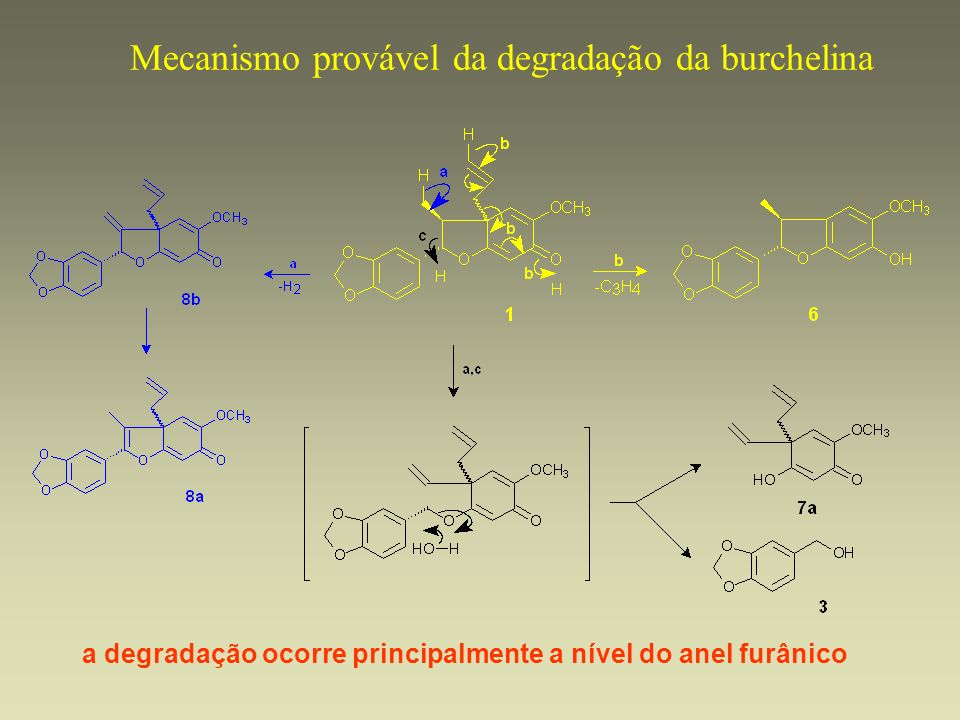 Mecanismo provável da degradação da burchelina a degradação ocorre principalmente a nível do anel furânico