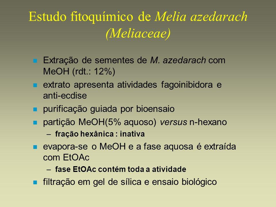 Estudo fitoquímico de Melia azedarach (Meliaceae) n Extração de sementes de M. azedarach com MeOH (rdt.: 12%) n extrato apresenta atividades fagoinibi