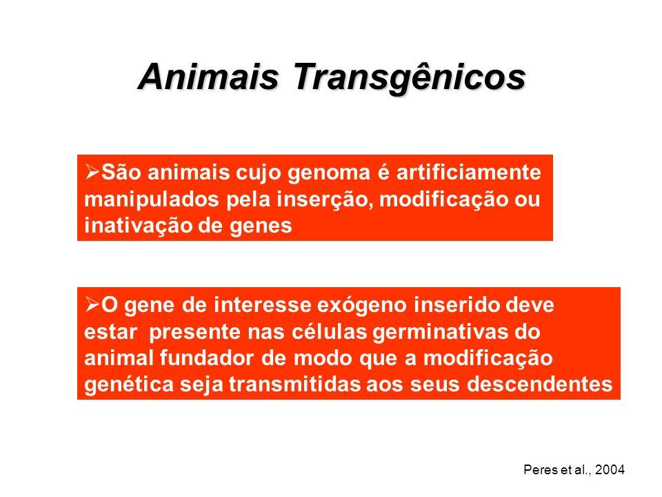 Engenharia Genética + Embriologia Desenvolvimento de Animais Transgênicos