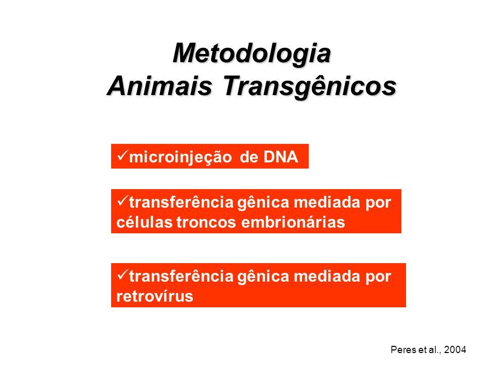 Animais Transgênicos São animais cujo genoma é artificiamente manipulados pela inserção, modificação ou inativação de genes O gene de interesse exógen