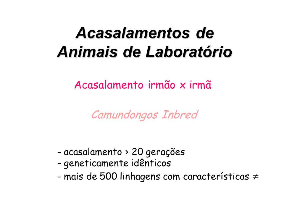 Acasalamentos de Animais de Laboratório Acasalamento ao acaso – outbred - Fisiologia reprodutiva - Embriologia - Controle biológico e fármacos em gera