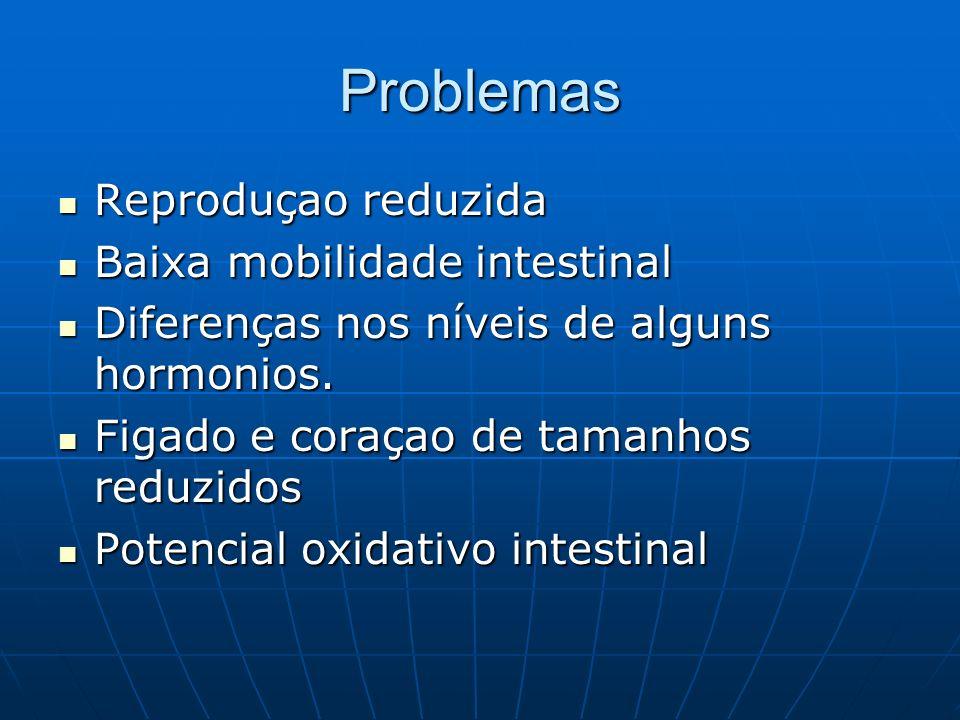 Problemas Reproduçao reduzida Reproduçao reduzida Baixa mobilidade intestinal Baixa mobilidade intestinal Diferenças nos níveis de alguns hormonios.