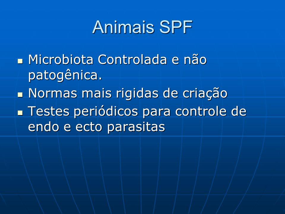 Animais SPF Microbiota Controlada e não patogênica. Microbiota Controlada e não patogênica. Normas mais rigidas de criação Normas mais rigidas de cria