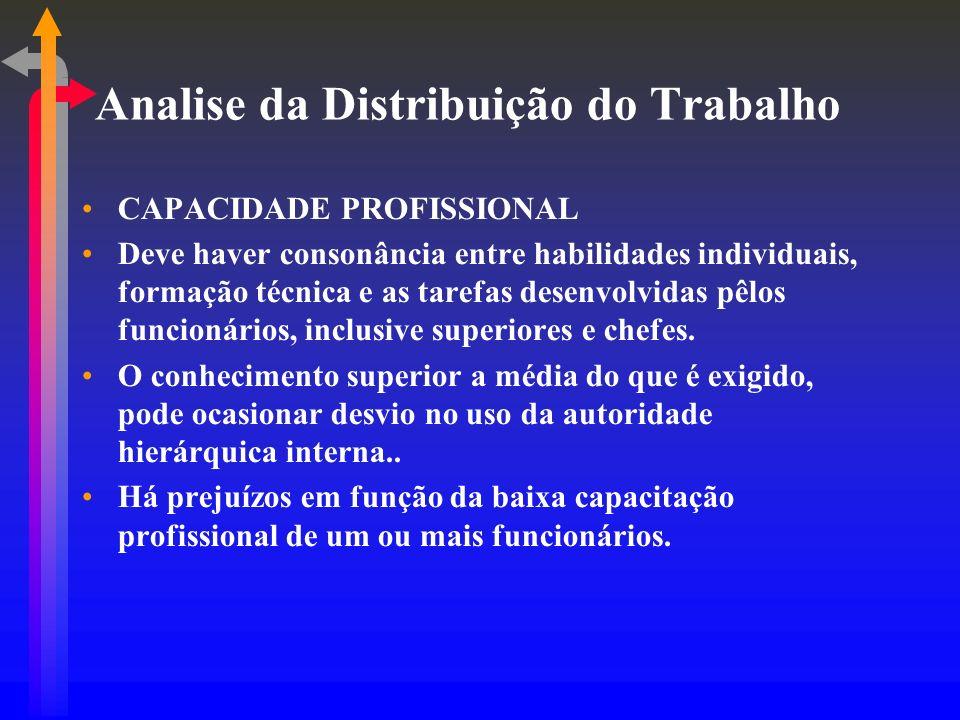 Analise da Distribuição do Trabalho CAPACIDADE PROFISSIONAL Deve haver consonância entre habilidades individuais, formação técnica e as tarefas desenvolvidas pêlos funcionários, inclusive superiores e chefes.