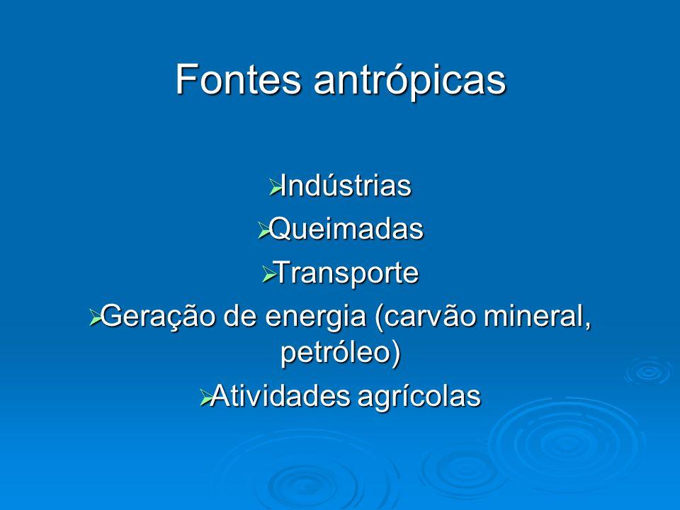 Fontes antrópicas Indústrias Indústrias Queimadas Queimadas Transporte Transporte Geração de energia (carvão mineral, petróleo) Geração de energia (ca