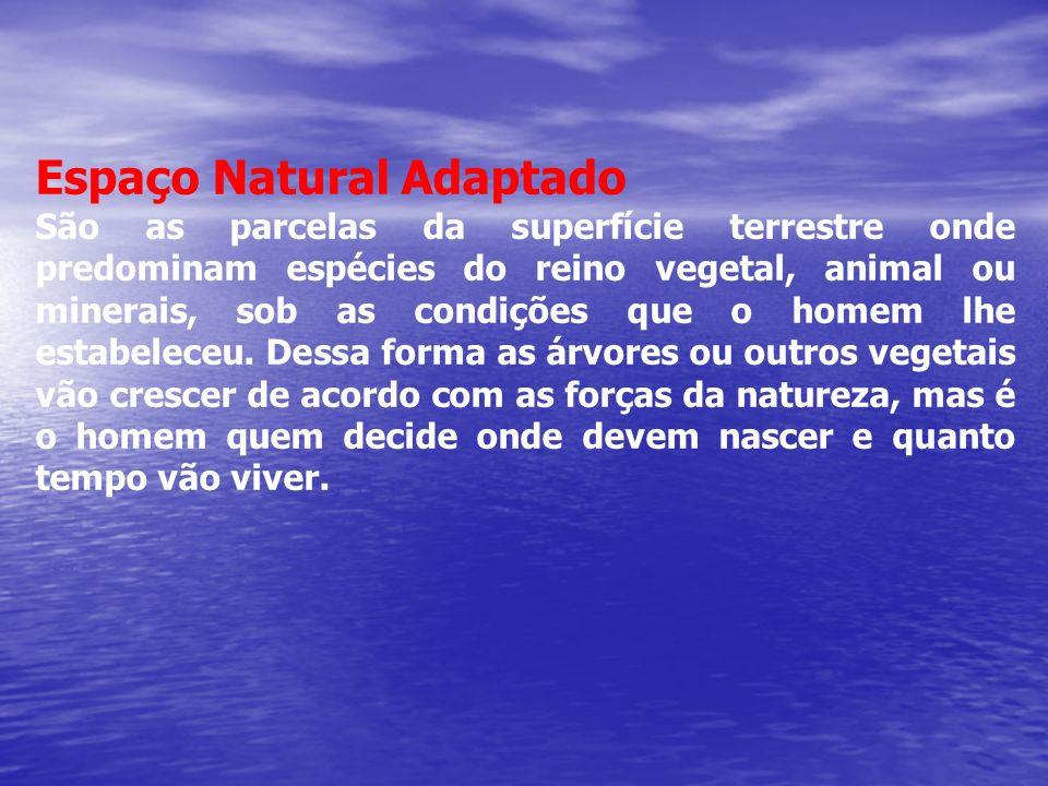 Espaço Natural Adaptado São as parcelas da superfície terrestre onde predominam espécies do reino vegetal, animal ou minerais, sob as condições que o