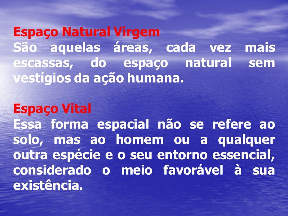 Espaço Natural Virgem São aquelas áreas, cada vez mais escassas, do espaço natural sem vestígios da ação humana. Espaço Vital Essa forma espacial não