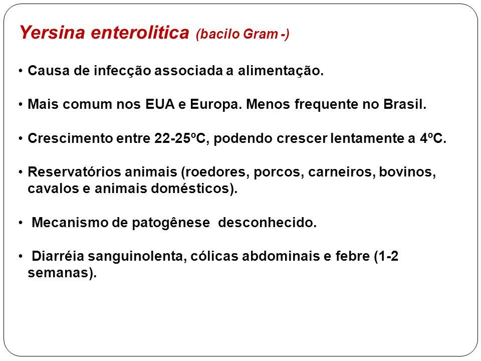 Yersina enterolitica (bacilo Gram -) Causa de infecção associada a alimentação. Mais comum nos EUA e Europa. Menos frequente no Brasil. Crescimento en