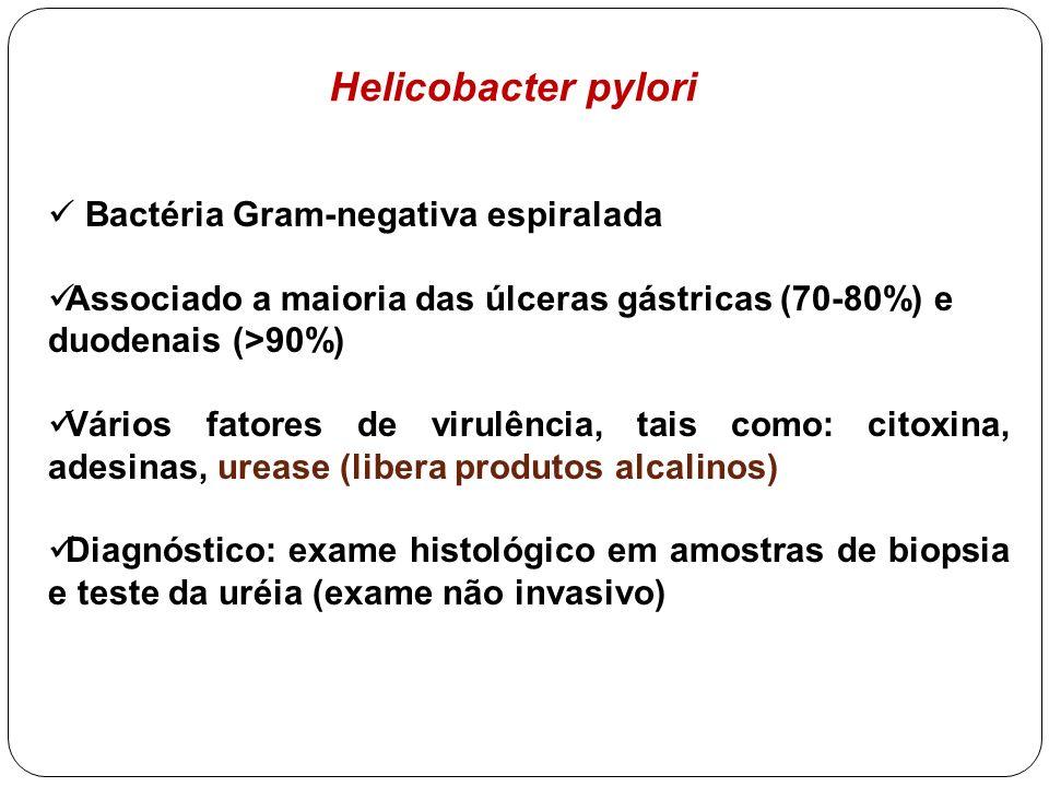 Helicobacter pylori Bactéria Gram-negativa espiralada Associado a maioria das úlceras gástricas (70-80%) e duodenais (>90%) Vários fatores de virulênc