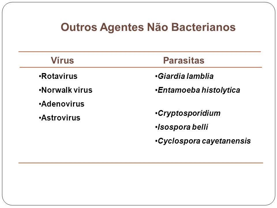 Outros Agentes Não Bacterianos Vírus Parasitas Rotavirus Norwalk virus Adenovirus Astrovirus Giardia lamblia Entamoeba histolytica Cryptosporidium Iso