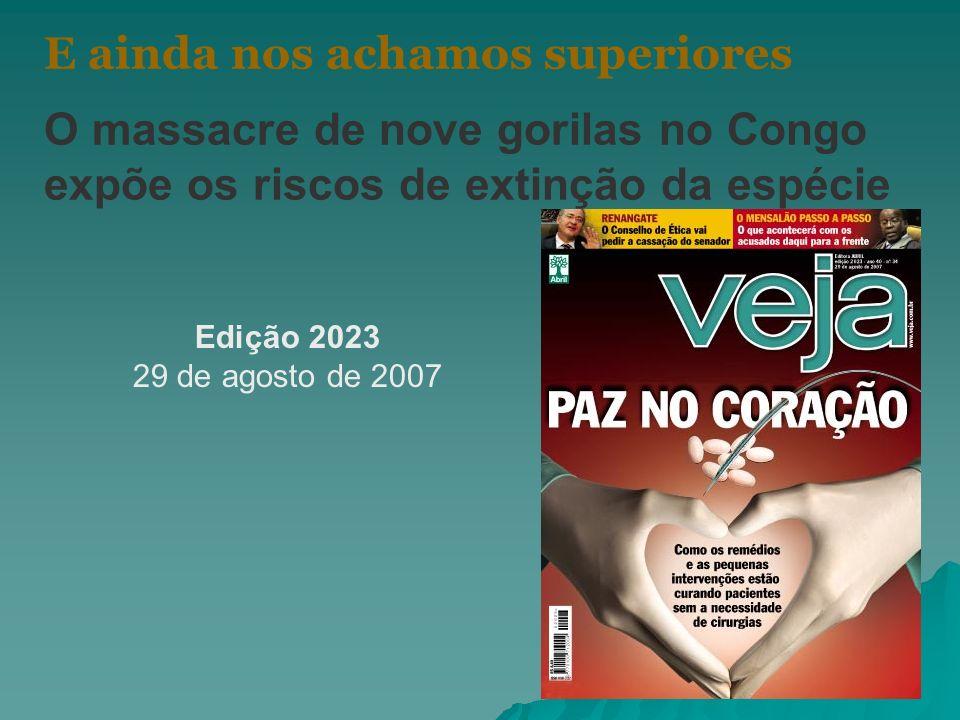 E ainda nos achamos superiores O massacre de nove gorilas no Congo expõe os riscos de extinção da espécie Edição 2023 29 de agosto de 2007