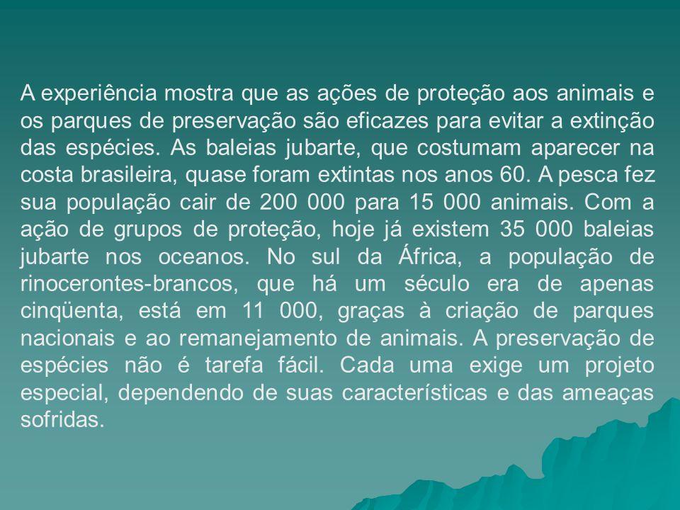A experiência mostra que as ações de proteção aos animais e os parques de preservação são eficazes para evitar a extinção das espécies. As baleias jub