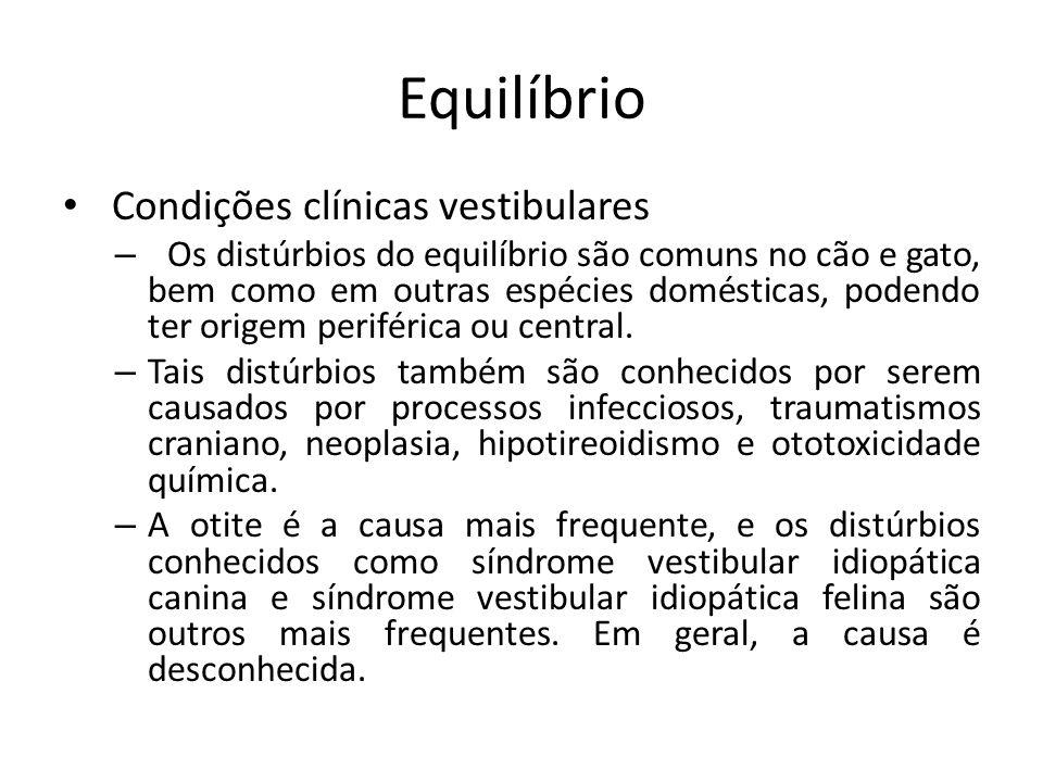 Equilíbrio Condições clínicas vestibulares – Os distúrbios do equilíbrio são comuns no cão e gato, bem como em outras espécies domésticas, podendo ter