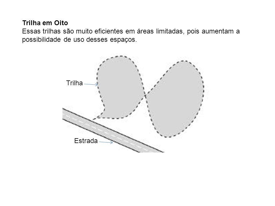 Trilha Linear Esse é o formato de trilha mais simples e comum.