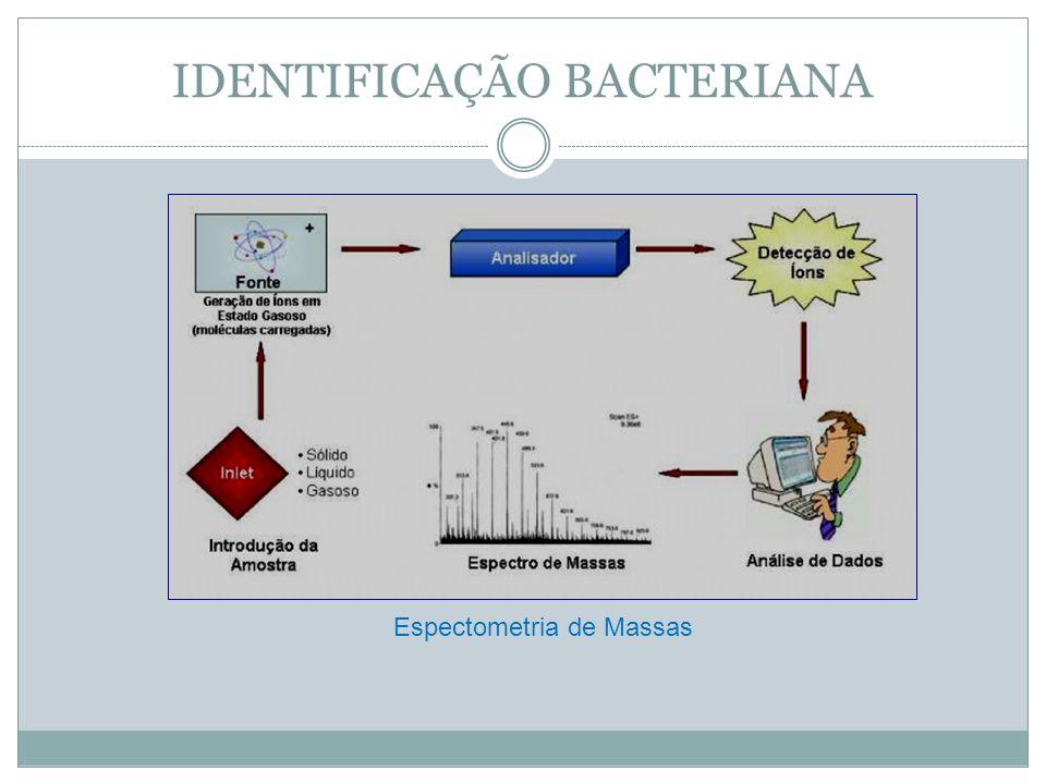 IDENTIFICAÇÃO BACTERIANA Espectometria de Massas
