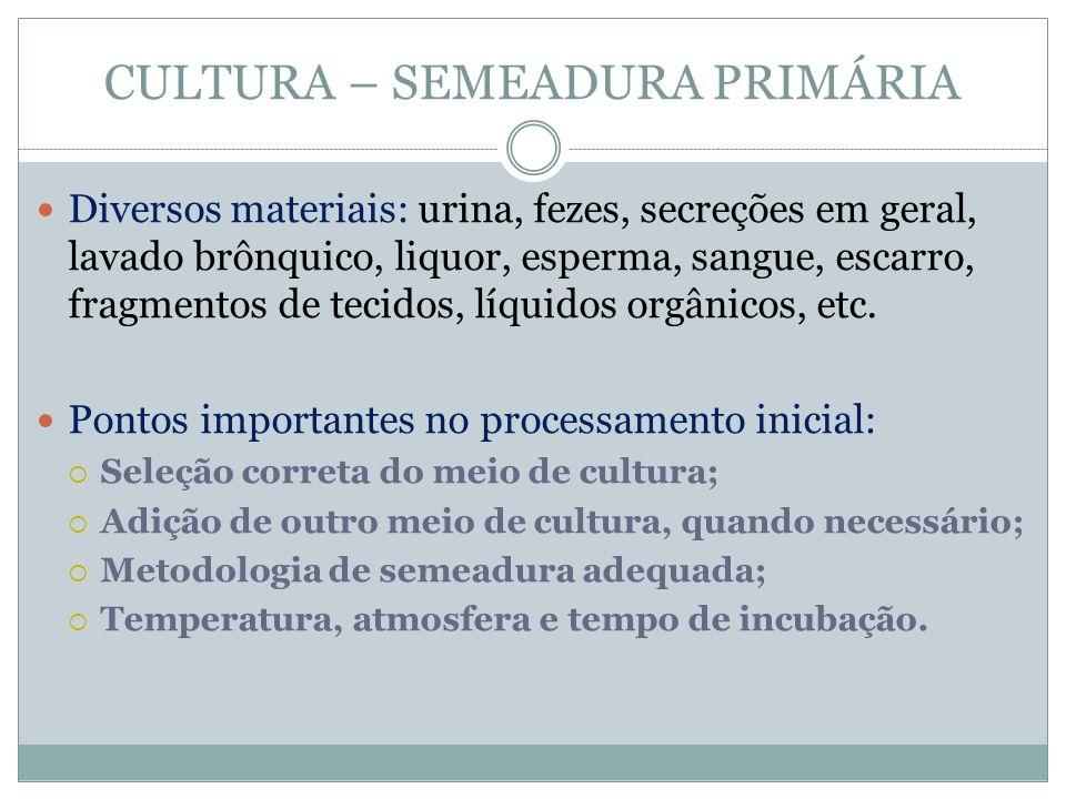 CULTURA – SEMEADURA PRIMÁRIA Fonte: Oprustil, Zoccoli, Tobouti e Sinto. 2010.