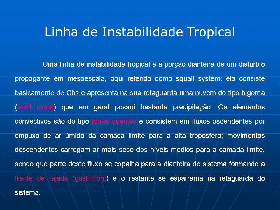 Uma linha de instabilidade tropical é a porção dianteira de um distúrbio propagante em mesoescala, aqui referido como squall system; ela consiste basi