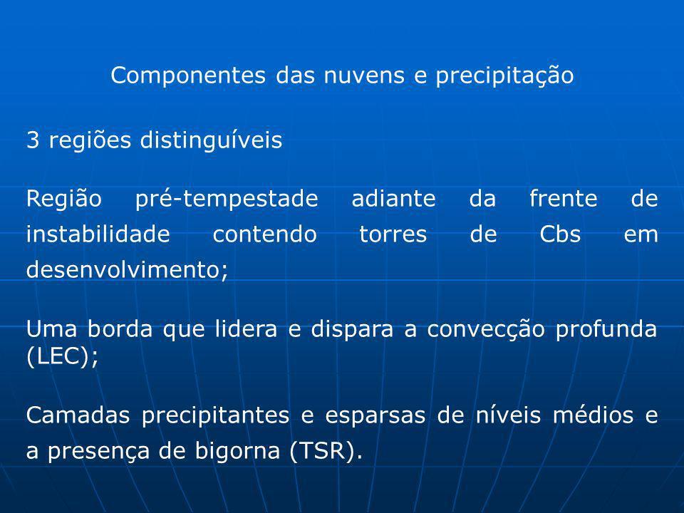 3 regiões distinguíveis Região pré-tempestade adiante da frente de instabilidade contendo torres de Cbs em desenvolvimento; Uma borda que lidera e dis