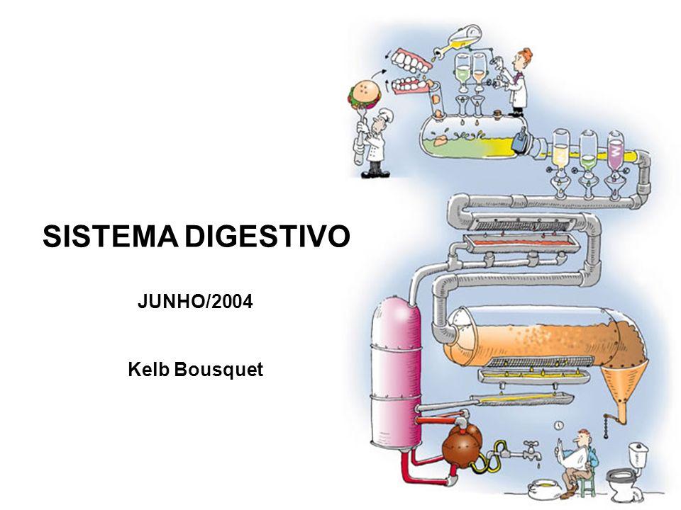 SISTEMA DIGESTIVO JUNHO/2004 Kelb Bousquet