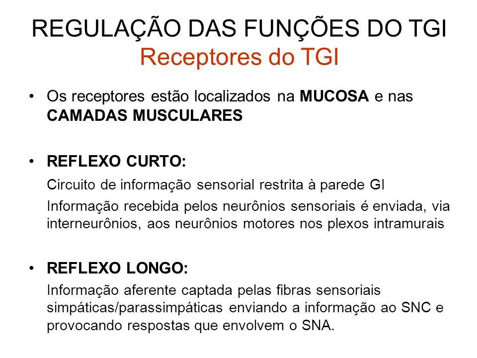 Os receptores estão localizados na MUCOSA e nas CAMADAS MUSCULARES REFLEXO CURTO: Circuito de informação sensorial restrita à parede GI Informação rec