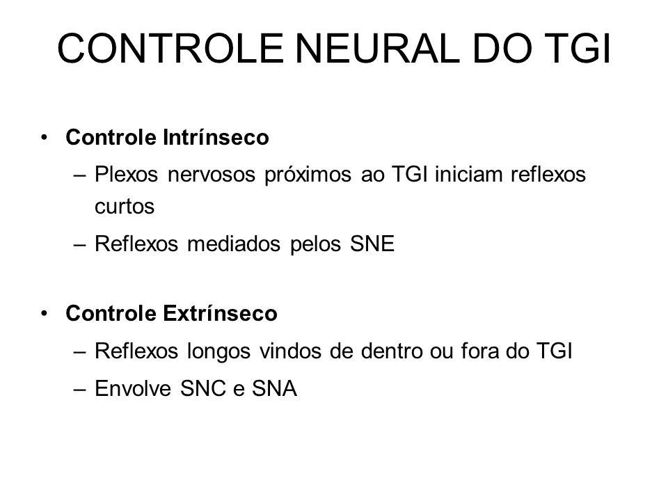 CONTROLE NEURAL DO TGI Controle Intrínseco –Plexos nervosos próximos ao TGI iniciam reflexos curtos –Reflexos mediados pelos SNE Controle Extrínseco –