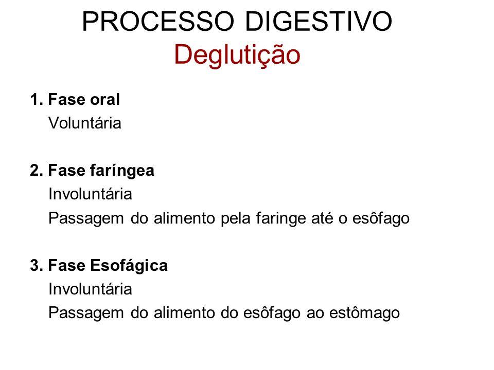 1. Fase oral Voluntária 2. Fase faríngea Involuntária Passagem do alimento pela faringe até o esôfago 3. Fase Esofágica Involuntária Passagem do alime