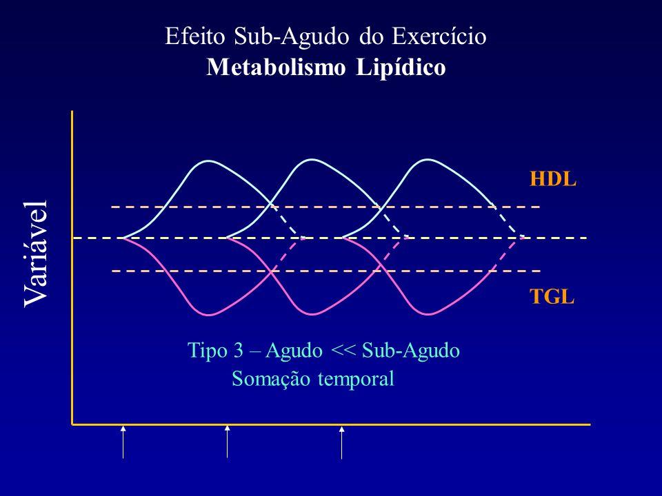 Efeito Sub-Agudo do Exercício Metabolismo Lipídico Variável Tipo 3 – Agudo << Sub-Agudo Somação temporal HDL TGL