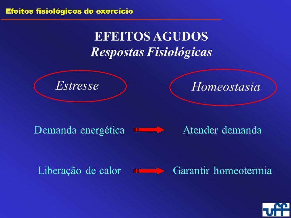 Efeitos fisiológicos do exercício EFEITOS CRÔNICOS Adaptações Fisiológicas Estresse repetido = treinamento Homeostasia Demanda energética Liberação de calor Atender demanda Garantir homeotermia MAIOR EFICIÊNCIA