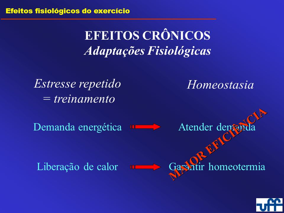 Efeitos fisiológicos do exercício EFEITOS CRÔNICOS Adaptações Fisiológicas Estresse repetido = treinamento Homeostasia Demanda energética Liberação de