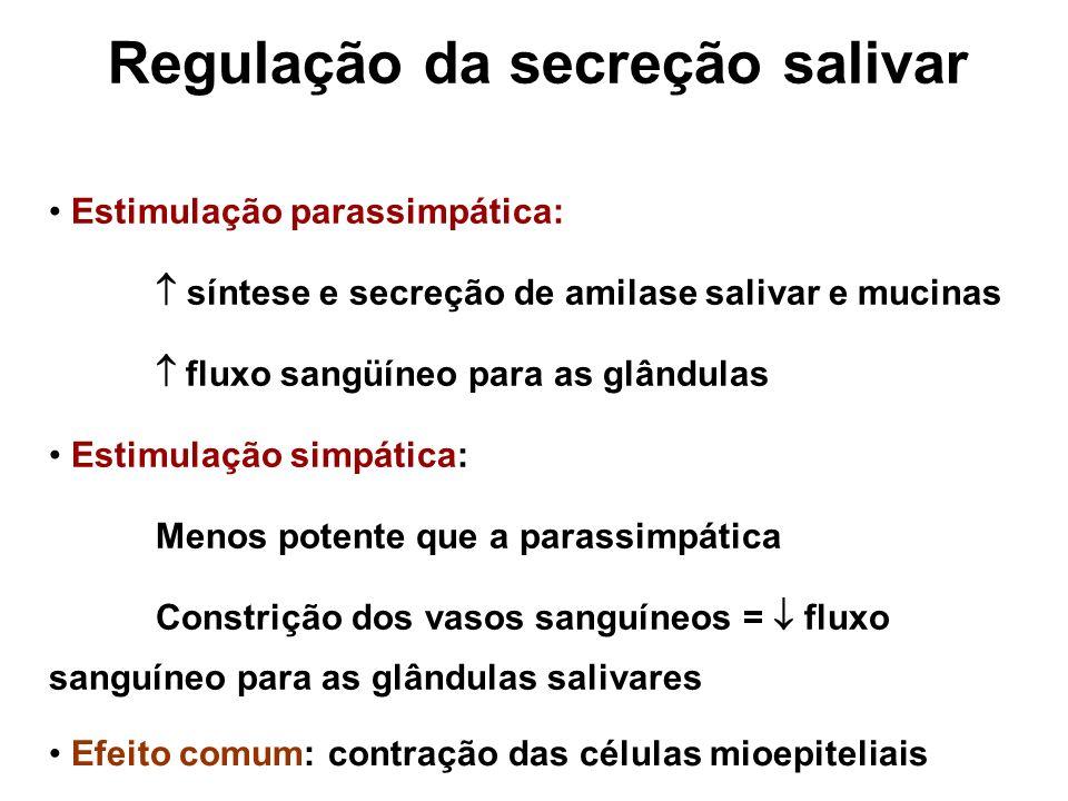 Regulação da secreção salivar InibiçãoEstímulo Sono Sabor ácido Fadiga Olfato Desidratação Presença do alimento Reflexos gástricos e intestinais na presença de alimentos irritantes ou náusea.