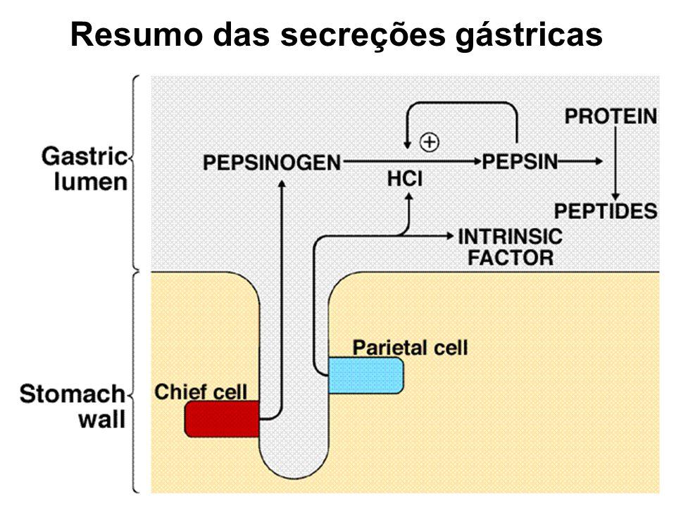 Auxilia na digestão de proteínas Converte pepsinogênio em pepsina Ação bactericida Insert fig.