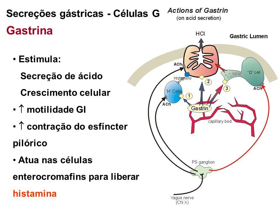 distensão gástrica Ach Secreções gástricas - Células G Gastrina pH < 3 secreção de gastrina inibida Células D estimulam secreção de somatostatina
