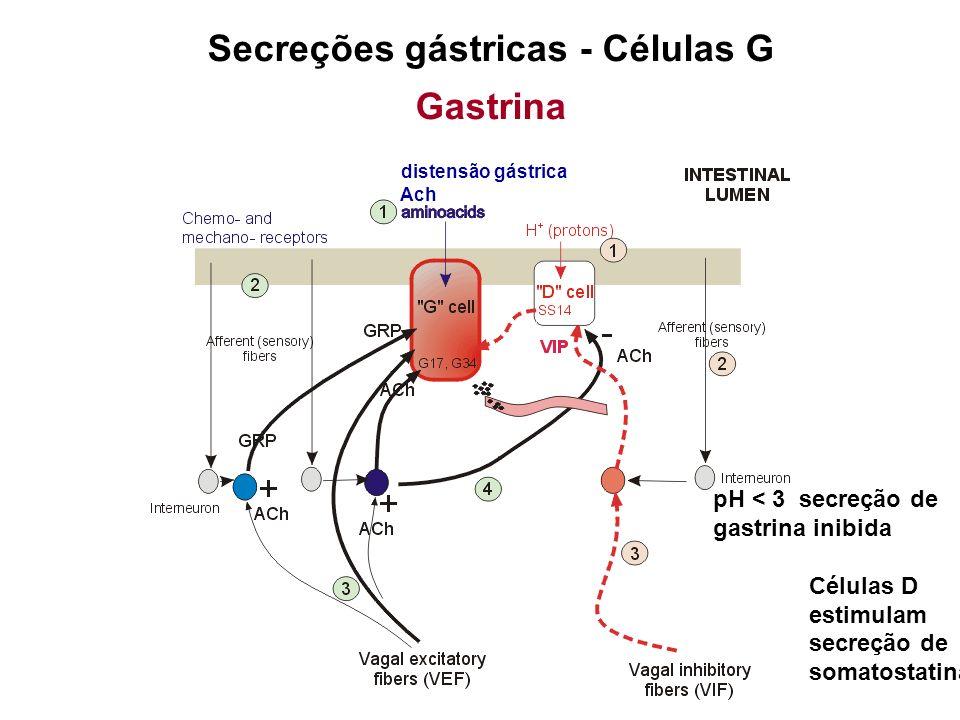 Secreções gástricas Histamina Sintetizada e armazenada nas células enterocromafins (lamina própria das glândulas gástricas) Secreção estimulada por: Gastrina Acetilcolina
