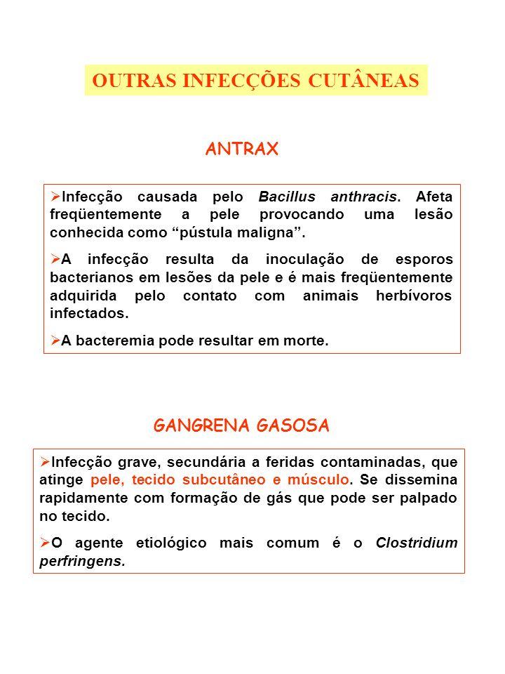 ANTRAX Infecção causada pelo Bacillus anthracis. Afeta freqüentemente a pele provocando uma lesão conhecida como pústula maligna. A infecção resulta d